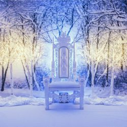 Narnia Christmas parties at the East of England Arena